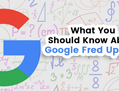 Google Fred Update Information Ireland